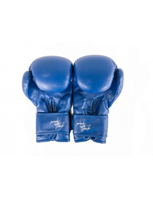 Boxing Gloves - Punch With Pride X Edition Blue