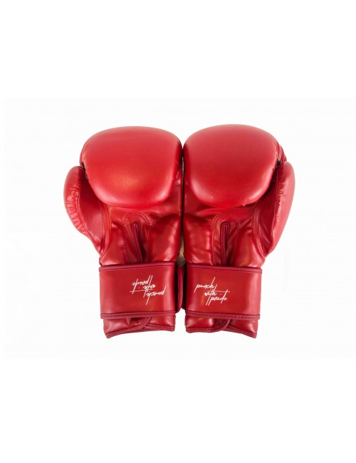 Boxing Gloves - Punch With Pride X Edition RED