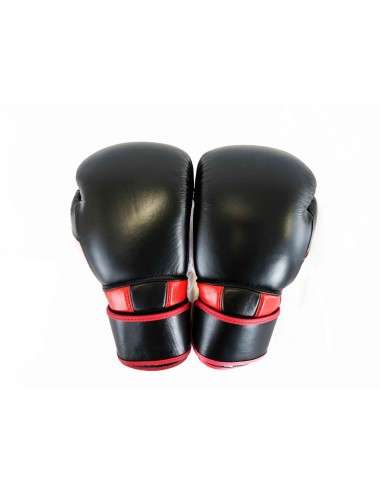 Boxing Gloves - Duo Ninja