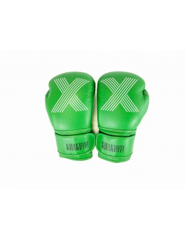 Boxing Gloves - Punch With Pride X Edition Green